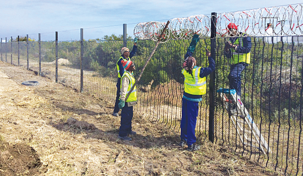 eskom fences on rd to csf